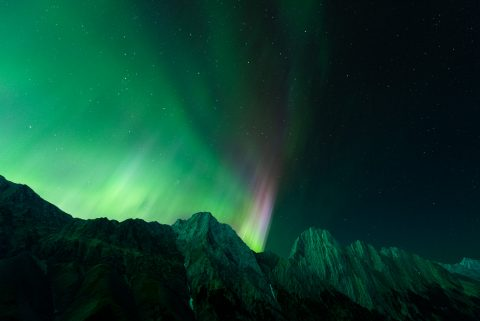 Green aurora with purple pillars extending over mountain range in Kananaskis
