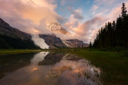 Mount Robson reflecting in swamp during pink sunrise