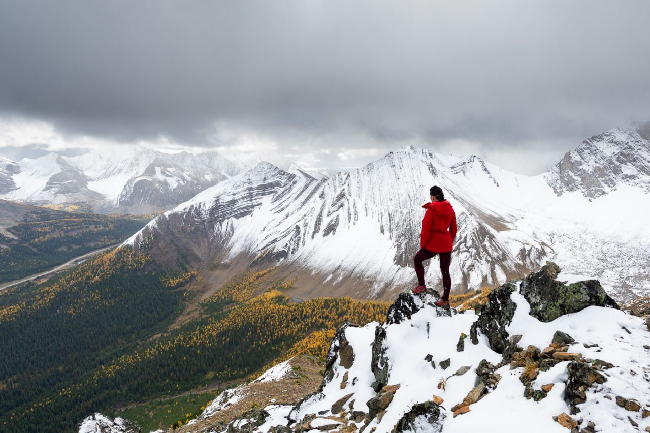 Hiker in red jacket looking down at a larch forest