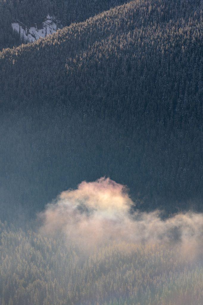 Rainbow coloured cloud drifting over snowy trees on a mountain side