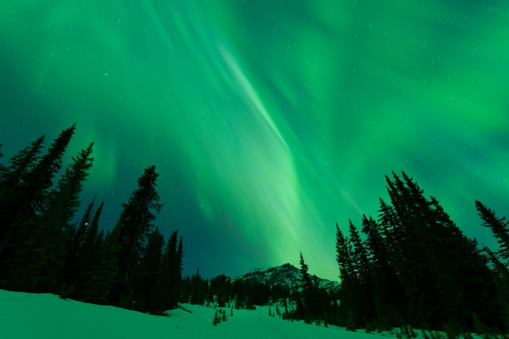 Aurora Borealis dancing over snowy trail and mountains, Icefields Parkway