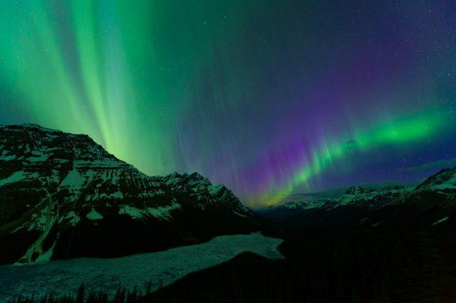 Northern Lights over Peyto Lake, Banff National Park