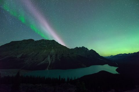 STEVE/sub auroral arc, picket fence and aurora borealis over Peyto Lake