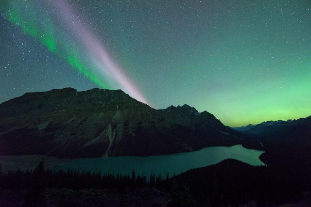 STEVE/sub auroral arc, picket fence and aurora borealis over Peyto Lake