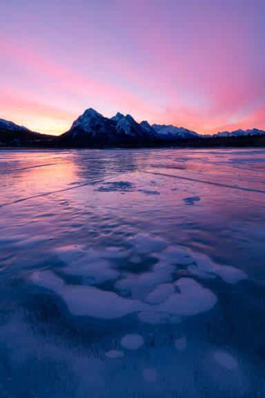 Sunrise pinks and methane bubbles at Abraham Lake, Alberta