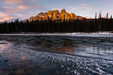 Frost flower lining frozen River bank with castle mountain glowing yellow