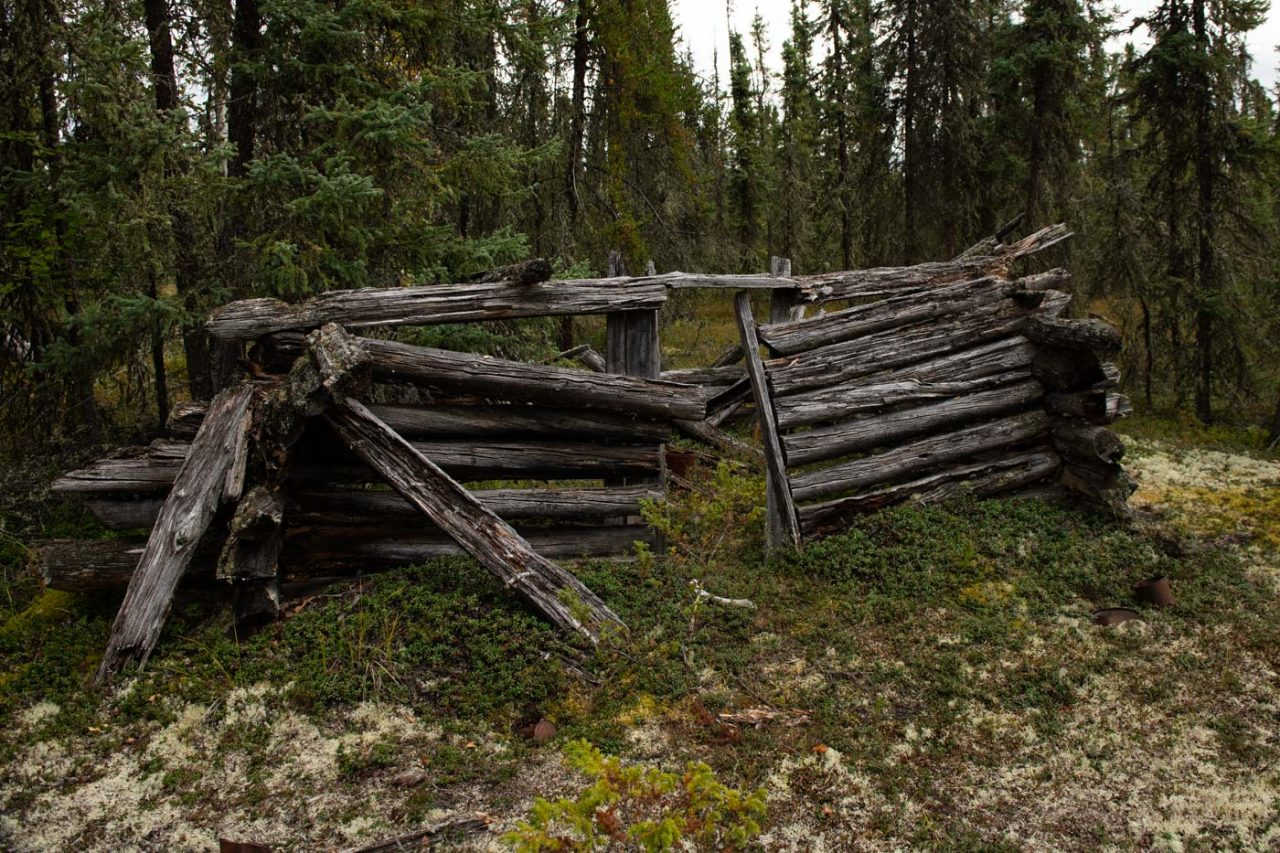 Dilapidated trappers cabin in Northern Alberta