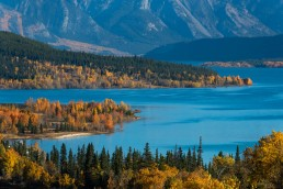 Fall colours and blue waters at Abraham Lake