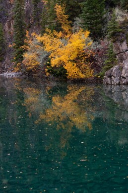 Fall coloured plants and rocks reflecting in blue waters