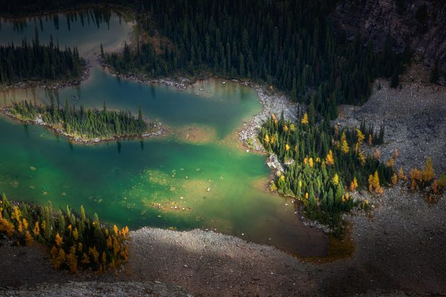 Brilliant blue and green of Mary Lakes lit up by sunlight, surrounded by Larches