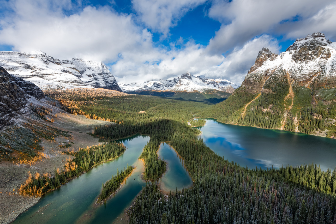 Lake O'hara and Mary Lakes during Larch Season in Yoho National Park from Opabin Prospect