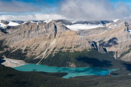 A brilliant blue peyto lake showing off it's wolf like shape viewed from above